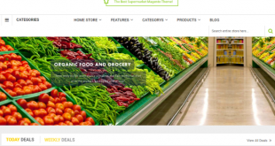 magento-grocery-website