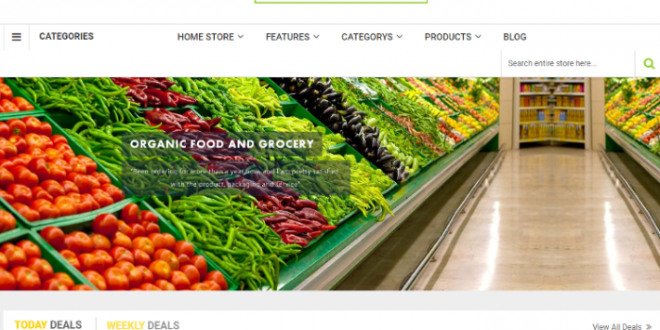 magento-grocery-website