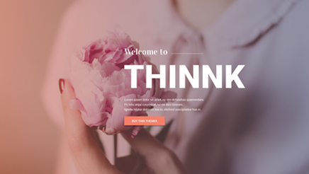 magento-2-theme-thinnk-banner-2