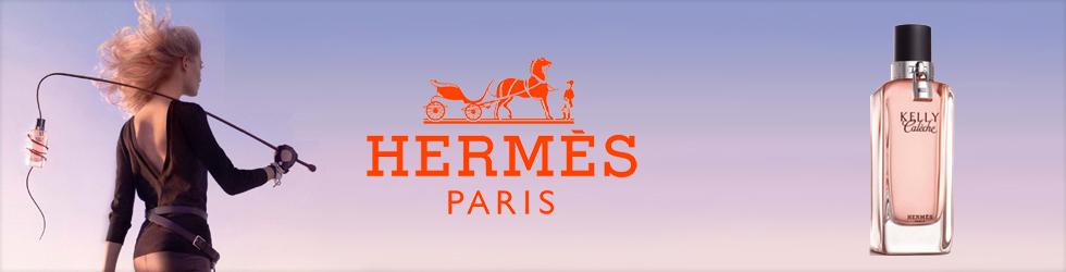 Hermes Banner in choosing premium Magento 2 theme design