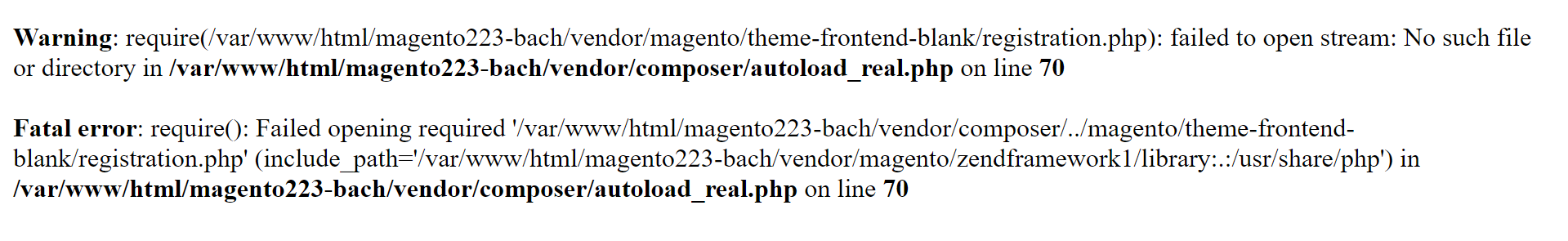 magento-2-blank-theme-download-error-log